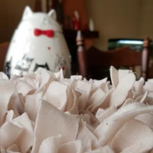 Na nudę dla psa: Mata węchowa, czyli Joszko movie #21